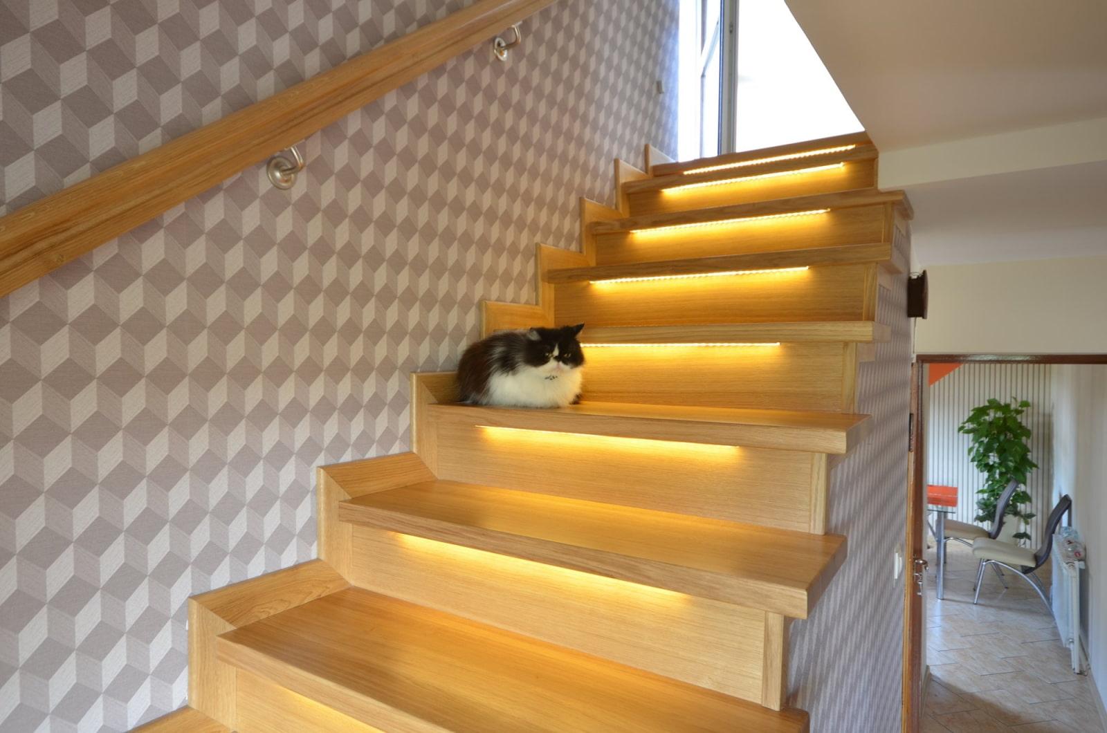 подсветка лестницы в доме светодиодными лентами