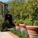 садовые вазоны для цветов дизайн идеи