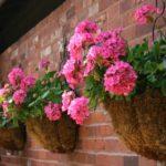 садовые вазоны для цветов декор фото