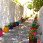садовые вазоны для цветов фото вариантов
