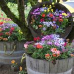 садовые вазоны для цветов виды фото