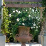 садовые вазоны для цветов фото обзор