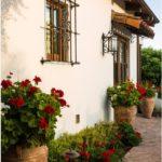 садовые вазоны для цветов идеи обзор
