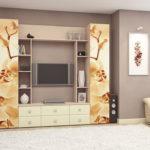 шкаф в гостиной варианты фото