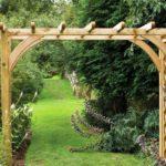 вертикальное озеленение в саду идеи декор