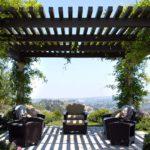 вертикальное озеленение в саду фото оформление