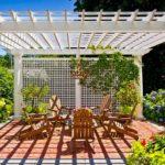 вертикальное озеленение в саду фото оформления