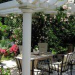 вертикальное озеленение в саду обзор фото