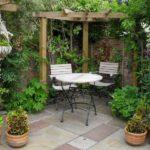 вертикальное озеленение в саду идеи обзор