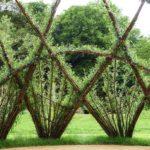 вертикальное озеленение в саду дизайн фото